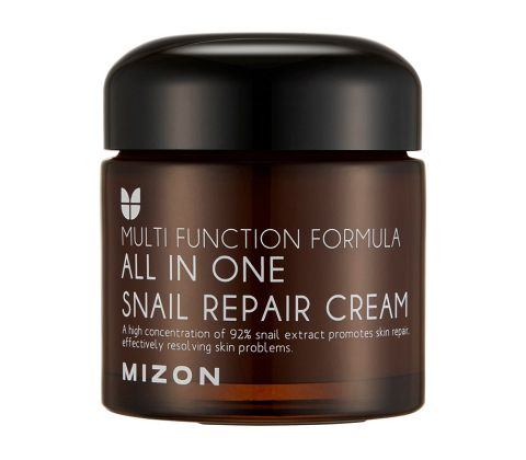 Mizon - All In One Snail Repair Cream